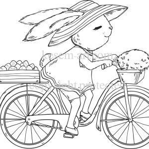 ארנבת